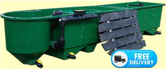 Multibay with vortex kockney koi for Large pond filtration
